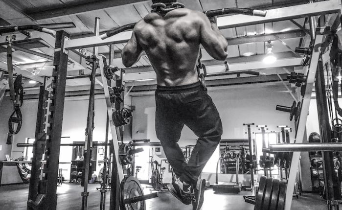 The Silverback Pull Up Protocol